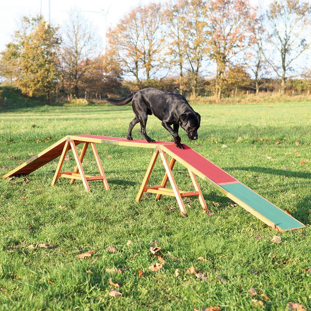 Trixie Dog Activity Agility Steg - L 456 x B 30 x H 64 cm