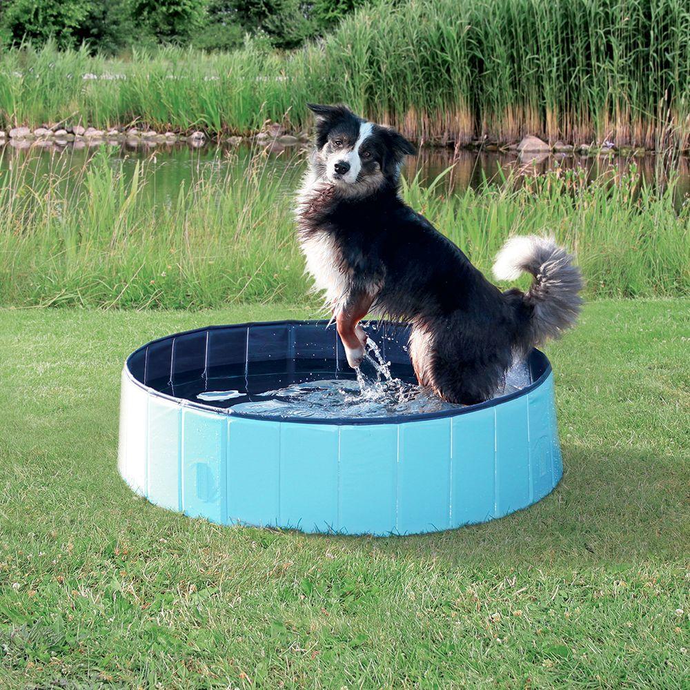 Foto Dog Pool, piscina per cani - Ø 160 + copertura *in PROMO% zooplus Exclusive