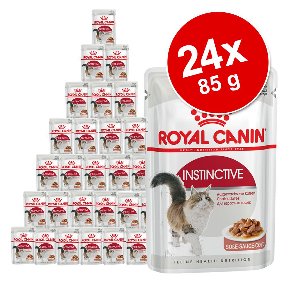 Blandat ekonomipack: 24 x 85 g Royal Canin gelé & sås - Instinctive i sås och gelé