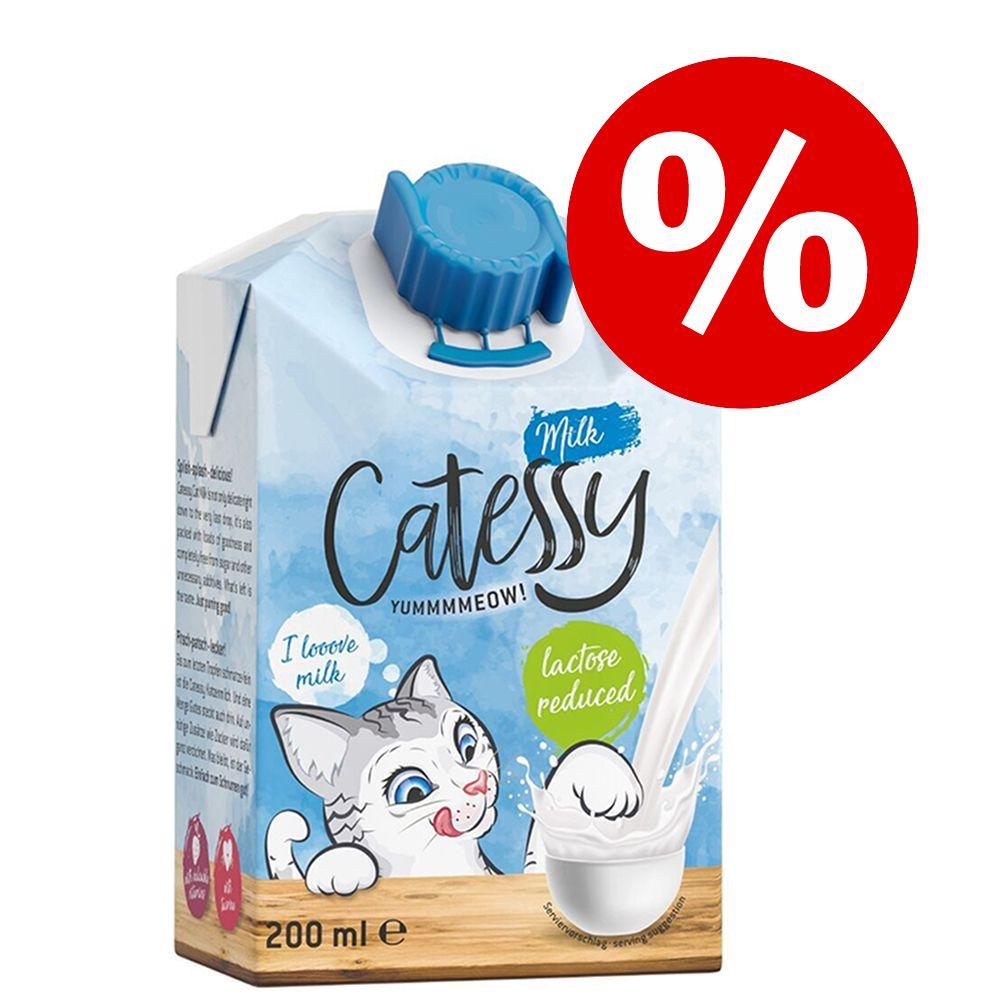 Stort ekonomipack: Catessy kattmjölk - 27-pack