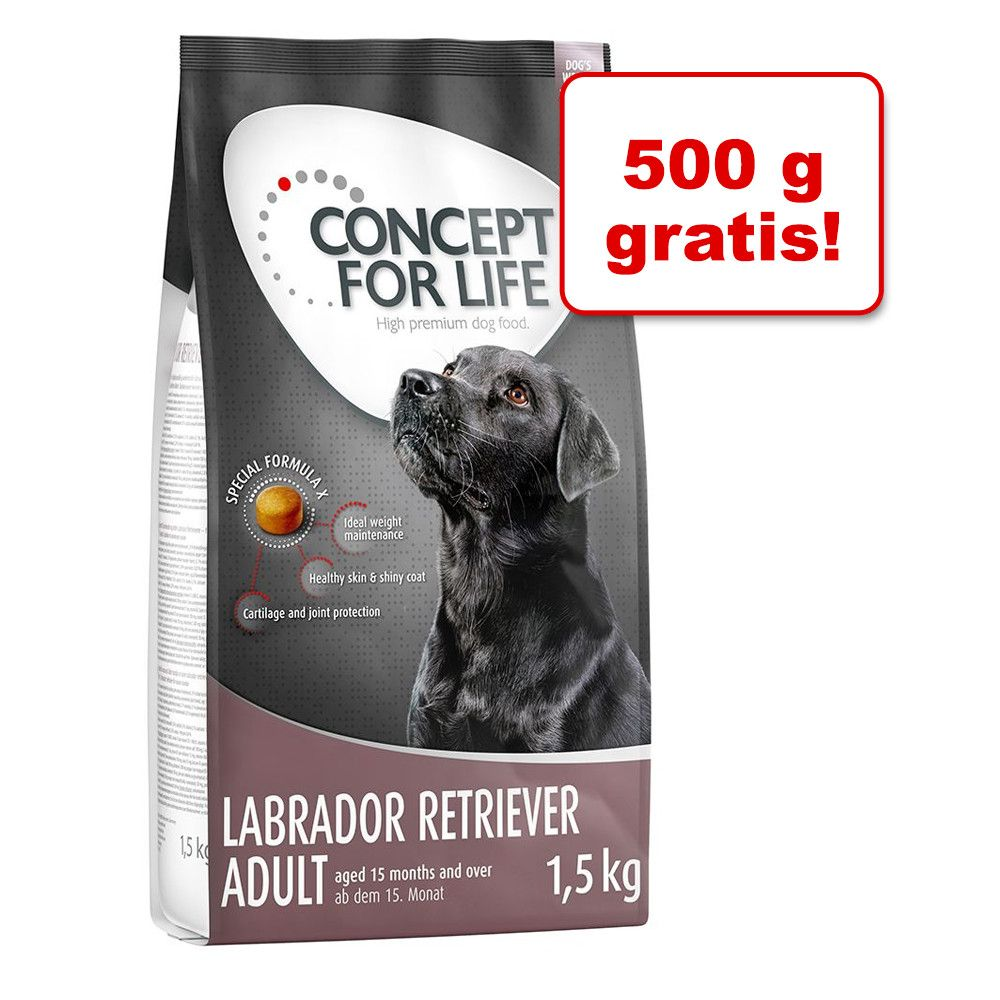 Image of 1 kg + 500 g gratis! 1,5 kg Concept for Life - Golden Retriever Adult