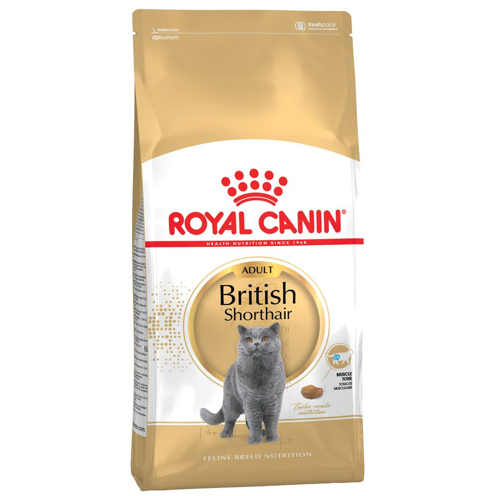 British Shorthair Adult Royal Canin Dry Cat Food