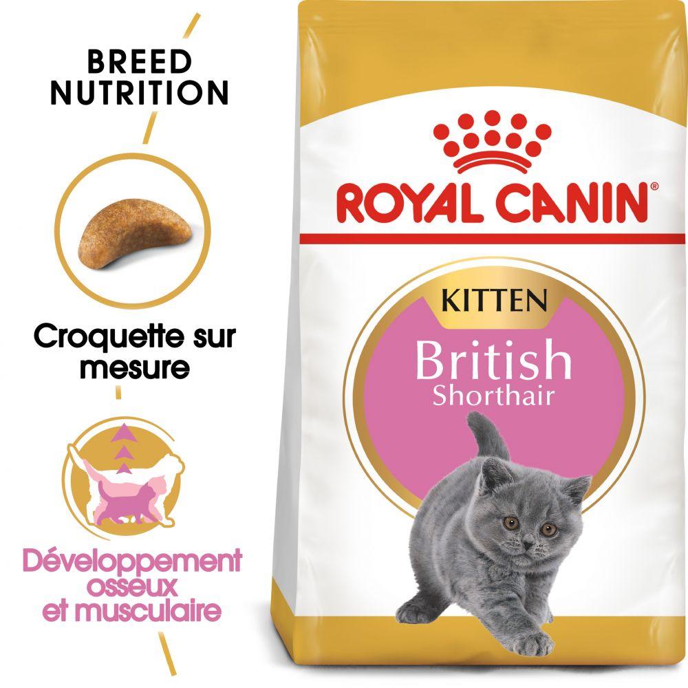 400g Kitten British Shorthair Royal Canin pour chaton - Croquettes pour chaton British Shorthair