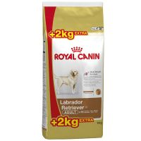 12 kg + 2 kg gratis! 14 kg royal canin breed - labrador retriever junior.