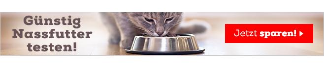Katzenfutter Nass Zu Top Preisen Bei Bitiba De Bestellen