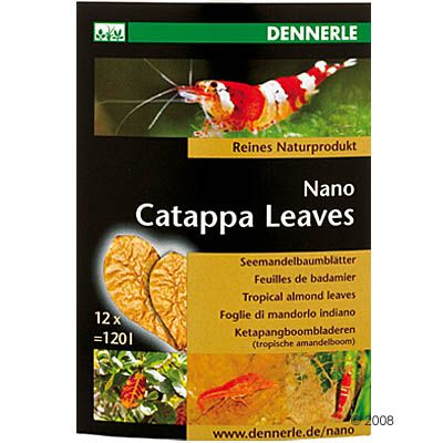 Dennerle Nano Catappa Leaves – 12 st