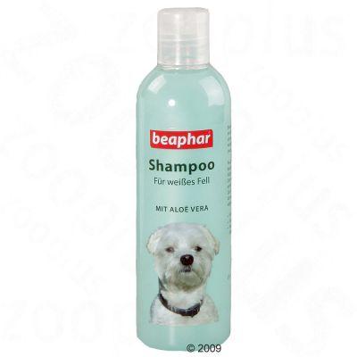 Beaphar-koiranshampoo vaalealle turkille - säästöpakkaus: 2 x 250 ml
