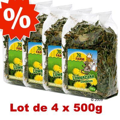 Rongeur Co Friandises Plantes alimentaires Lots économiques