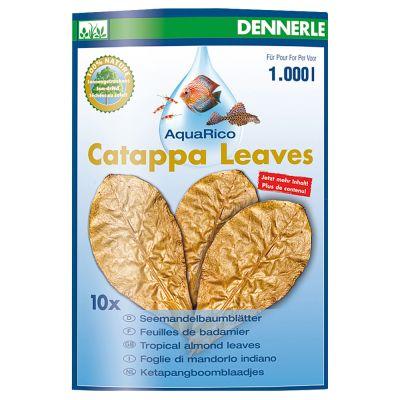 Dennerle Catappa Leaves - 8 sztuk