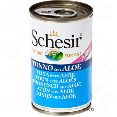 Schesir Kitten in Jelly - 6 x 140 g tonnikala & aloe