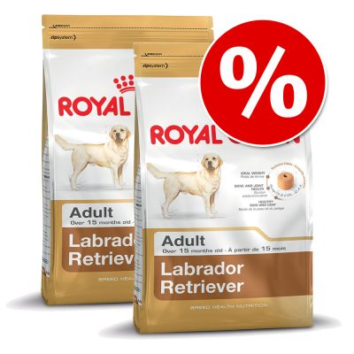 Ekonomipack: 2 eller 3 påsar Royal Canin Breed – Great Dane Adult (2 x 12 kg)