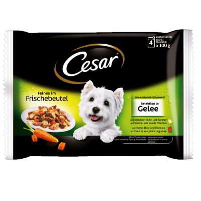 Cesar Pouch Selection in Jelly, monta makua - 24 x 100 g