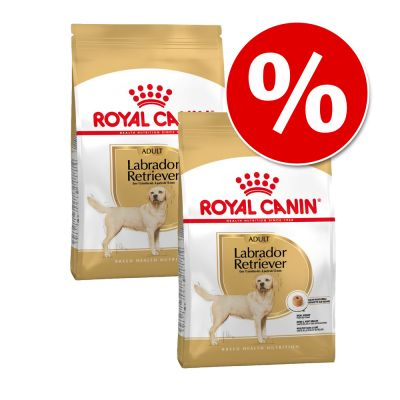 Royal Canin Breed 2 x jättipakkaus erikoishintaan! - 2 x 12 kg Golden Retriever Puppy