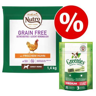 1,4 kg Nutro Grain Free + 3 x 170 g Greenies-hammashoitoherkut erikoishintaan! - Adult Lamb + herkut: Large