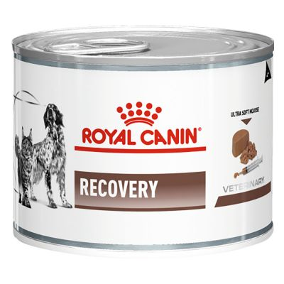 Royal Canin Canine Recovery - Veterinary Diet - 12 x 195 g