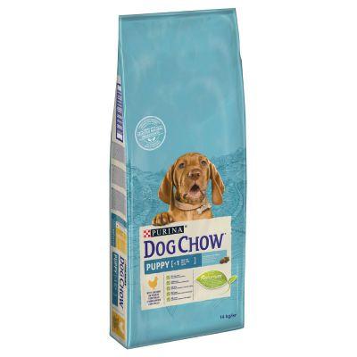 Purina Dog Chow Puppy con pollo - 14 kg