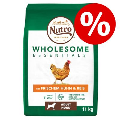 Nutro-koiranruoka erikoishintaan! - Grain Free Adult Small Breed Lamb (7 kg)