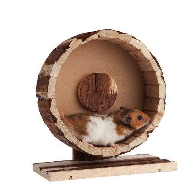 Speedy motionshjul av trä 29 cm x 10 cm