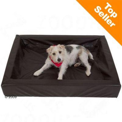 Hygieeninen koiranpeti, mokka - P 60 x L 50 cm