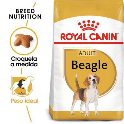 Royal Canin Beagle Adult - 2 x 12 kg - Pack Ahorro