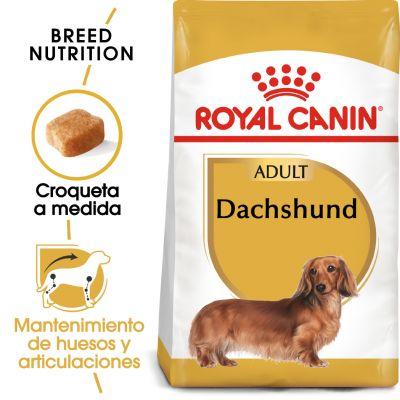 Royal Canin Teckel Adult - Comida húmeda: 24 x 85 g Royal Canin Breed Teckel