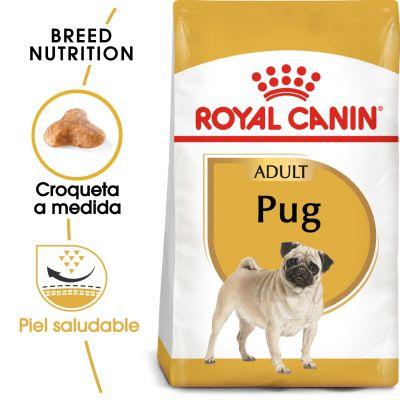 Royal Canin Carlino Adult - 3 x 3 kg - Pack Ahorro