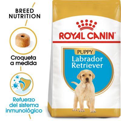 Royal Canin Labrador Retriever Puppy  - 3 kg