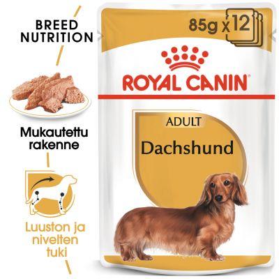 Royal Canin Breed Dachshund - 12 x 85 g