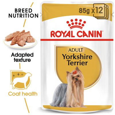 Royal Canin Breed Yorkshire Terrier - 48 x 85 g