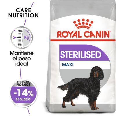 Royal Canin Maxi Adult Sterilised - 2 x 9 kg - Pack Ahorro