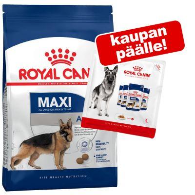 Royal Canin Size kuivaruoka + märkäruoka 4 pussia kaupan päälle! - Medium Adult 7+ (15 kg)