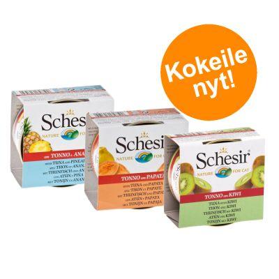 Schesir Fruit -purkkilajitelma 6 x 75 g - 3 makua