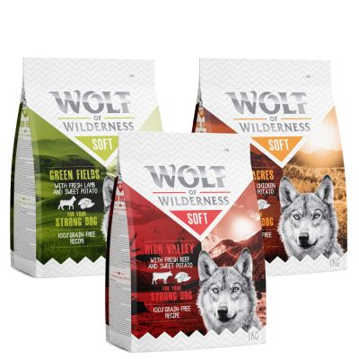 "Wolf of Wilderness Adult ""Soft & Strong"" - Mixpakket"