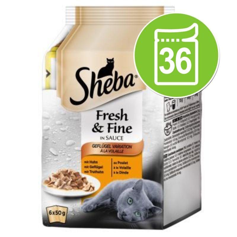 Ekonomipack: Sheba Fresh & Fine 36 x 50 g Fiskvariationer