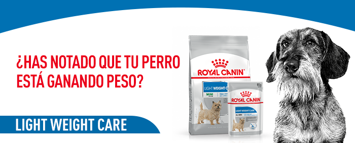 royal canin light weight care mini