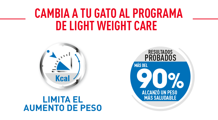 Royal Canin Light Weight Care en gelatina resultados probados