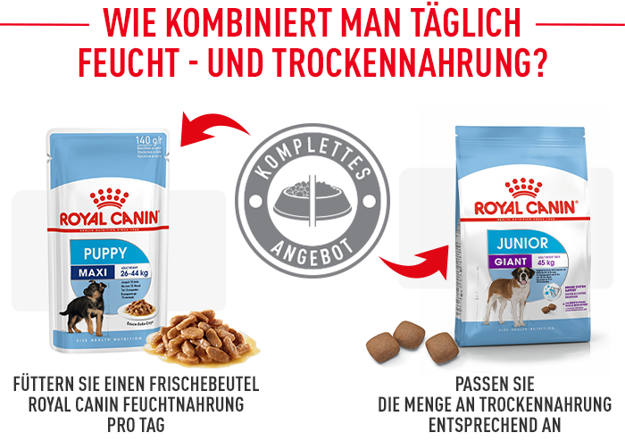 Royal Canin Giant Junior Trockenfutter