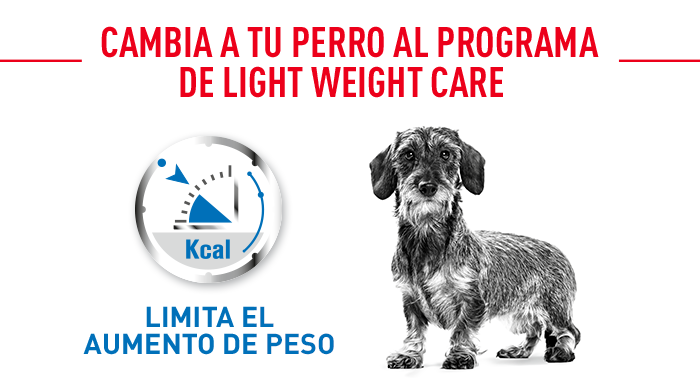 Royal Canin Light Weight Care Nassfutter für Hunde
