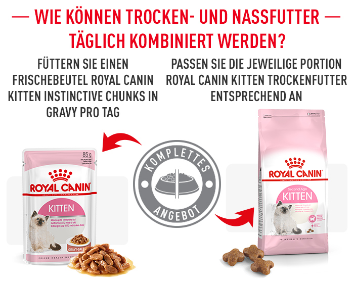 Mischfütterung Royal Canin Kitten Nassfutter in Sauce