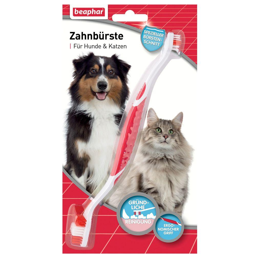 Brosse à dents Beaphar pour chien et chat - 1 brosse à dents