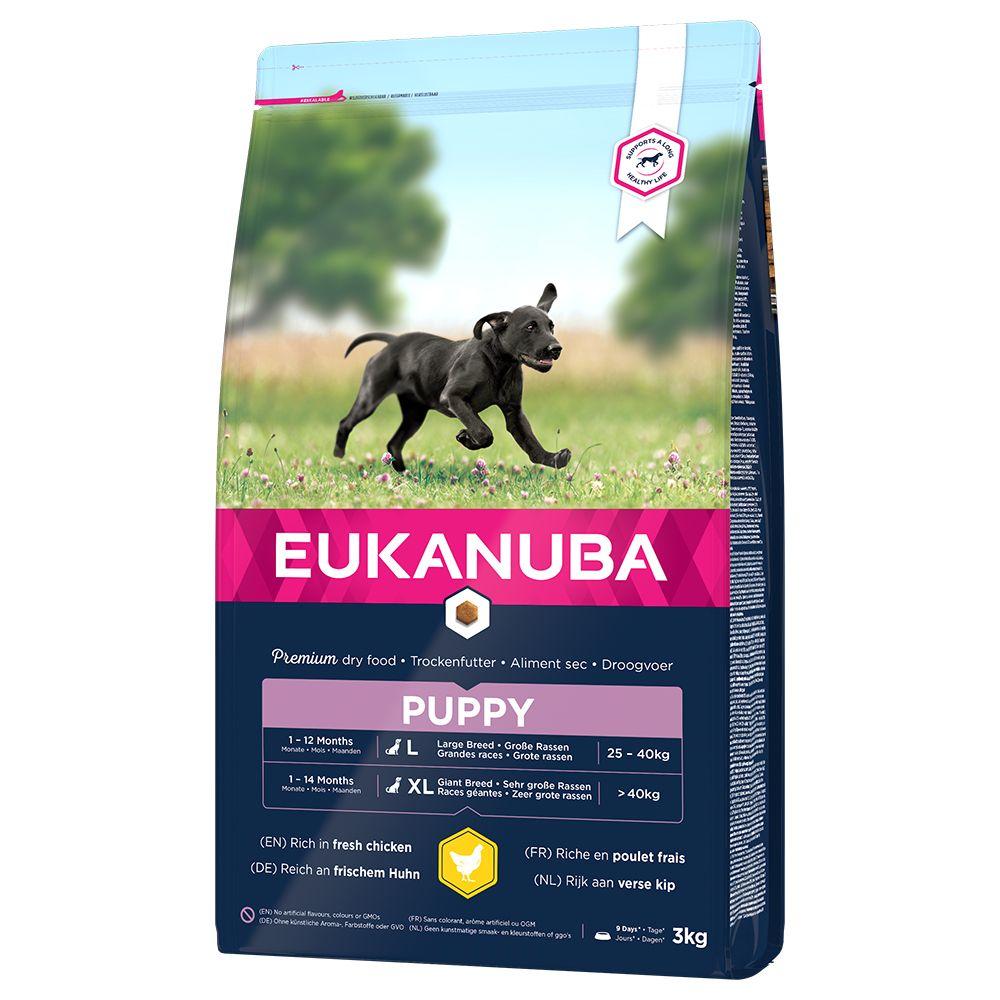 Eukanuba Puppy Large Breed Huhn - 3 kg