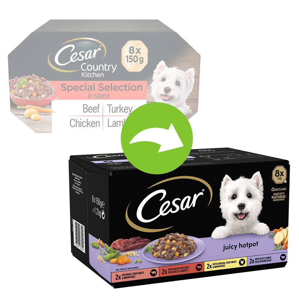 96x150g Cesar Juicy Hotpot Sélection mixte - Pâtée pour chien