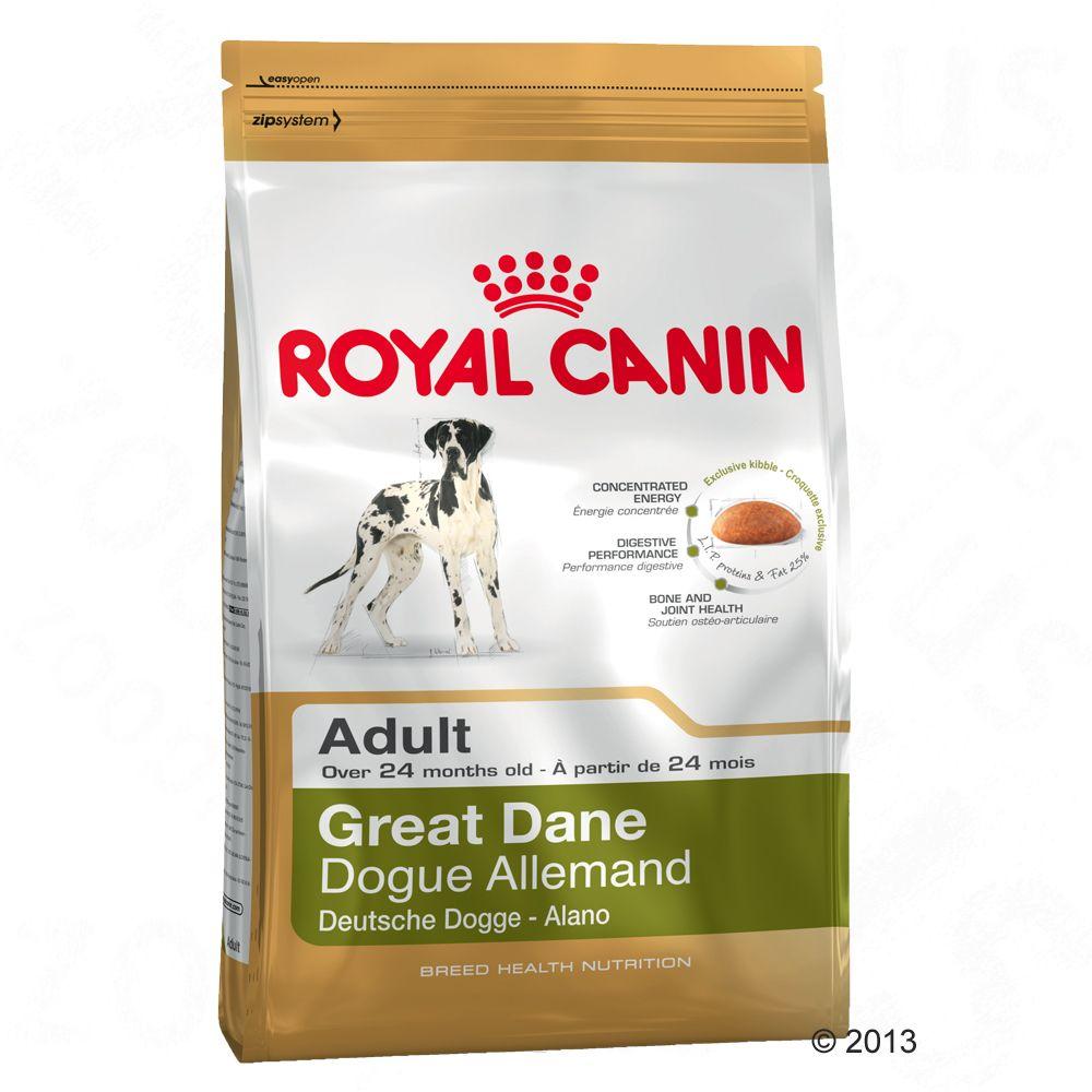 Royal Canin Great Dane Ad