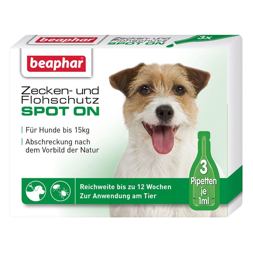Zecken- und Flohschutz Spot-On - 3 x 1 ml, bis 15 kg