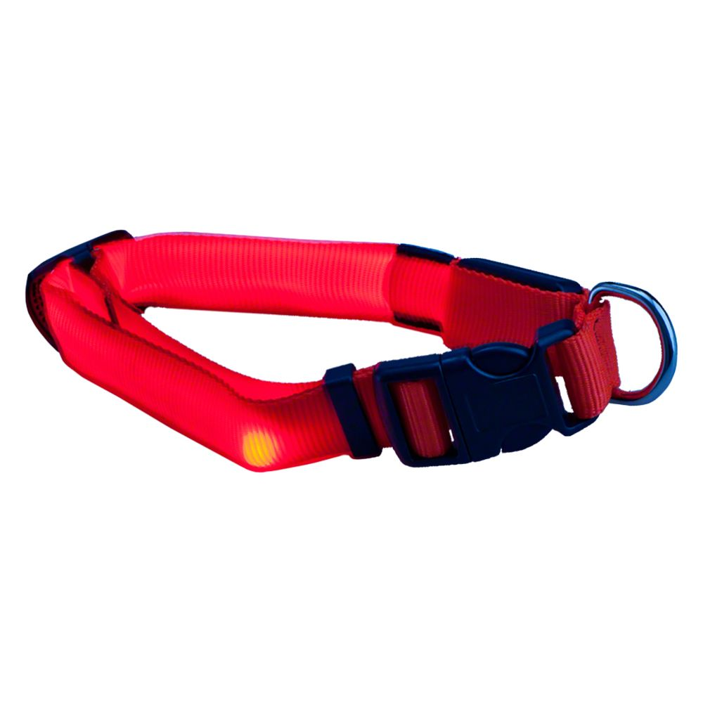 Trixie Flash Collar - Neon Orange - Size M-L