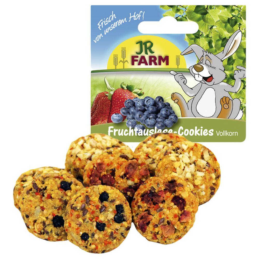 JR Farm Wholemeal Fruit Selection Cookies - Saver Pack: 2 x 8 pieces