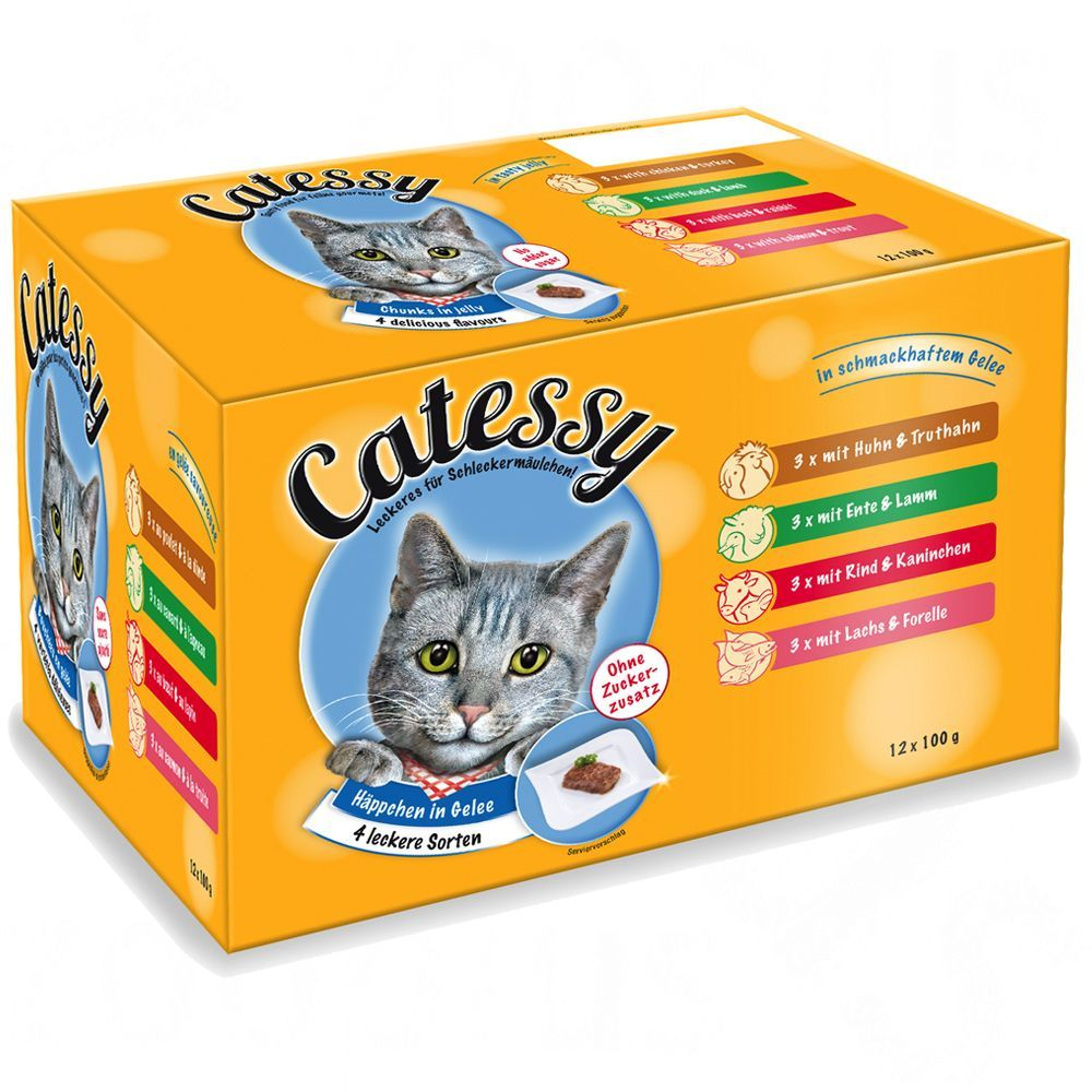 100g Catessy Pouches Wet Cat Food