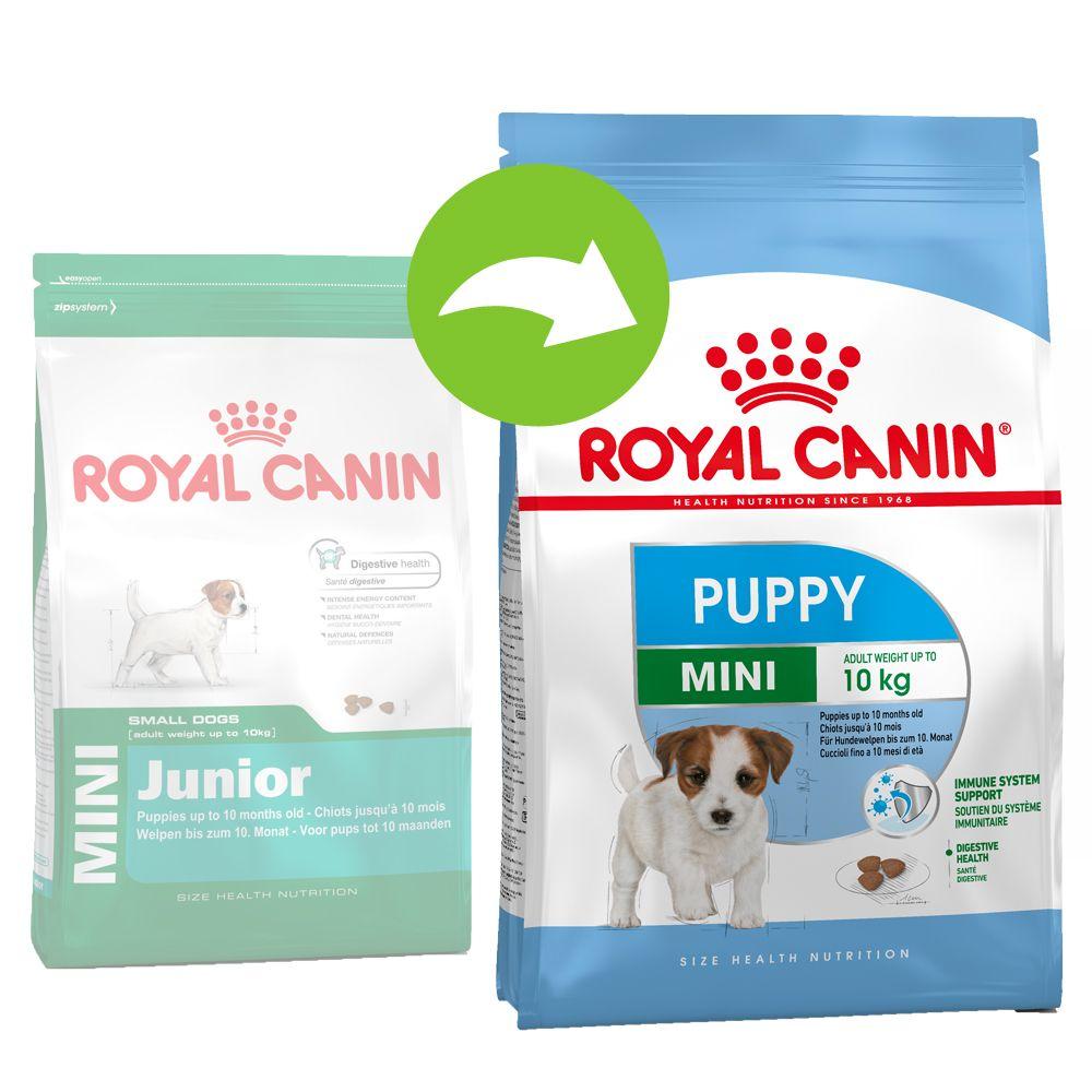 Royal Canin Mini Puppy | Junior - 2 kg