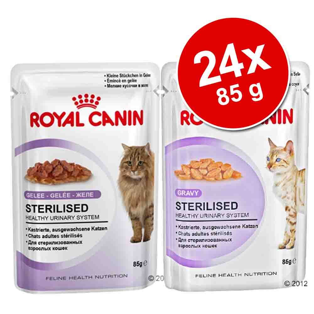 Pakiet mieszany Royal Can
