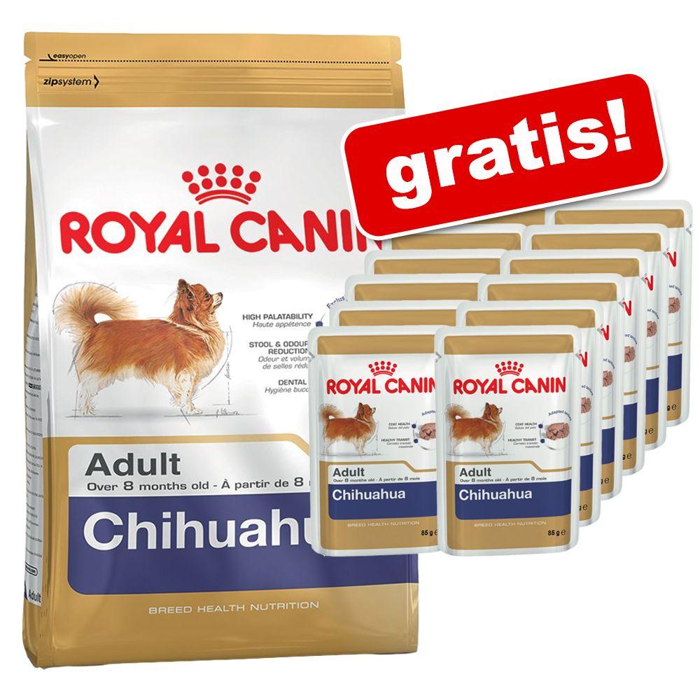 3 kg / 7,5 kg Royal Canin Breed + 12 x 85 g Pouches gratis! - Dachshund (2 x 7,5 kg)